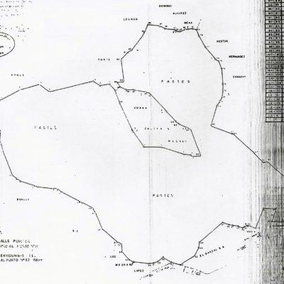 L1 Cadastral Plan